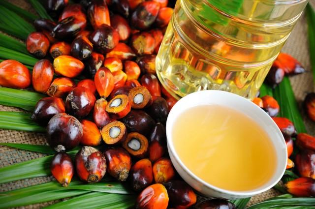 Perché nei Ghiottini non c'è olio di palma?