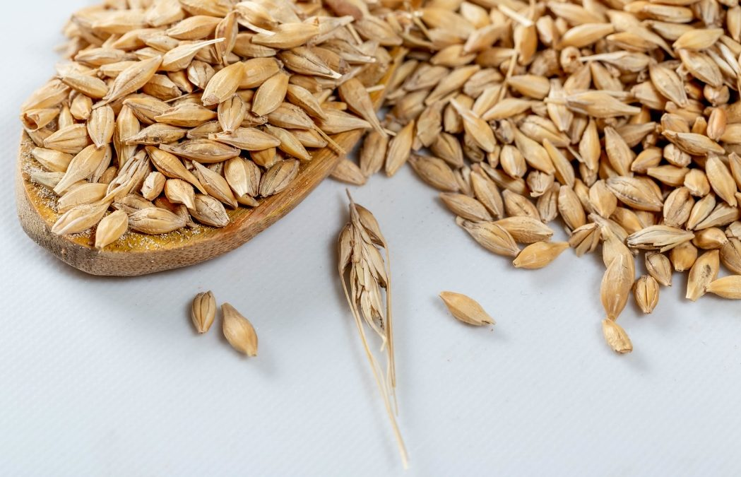 Ghiott ingredients: discover all the benefits of oats